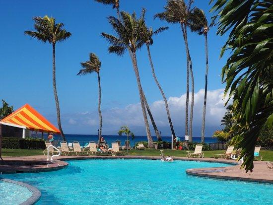 napili kai beach resort reviews