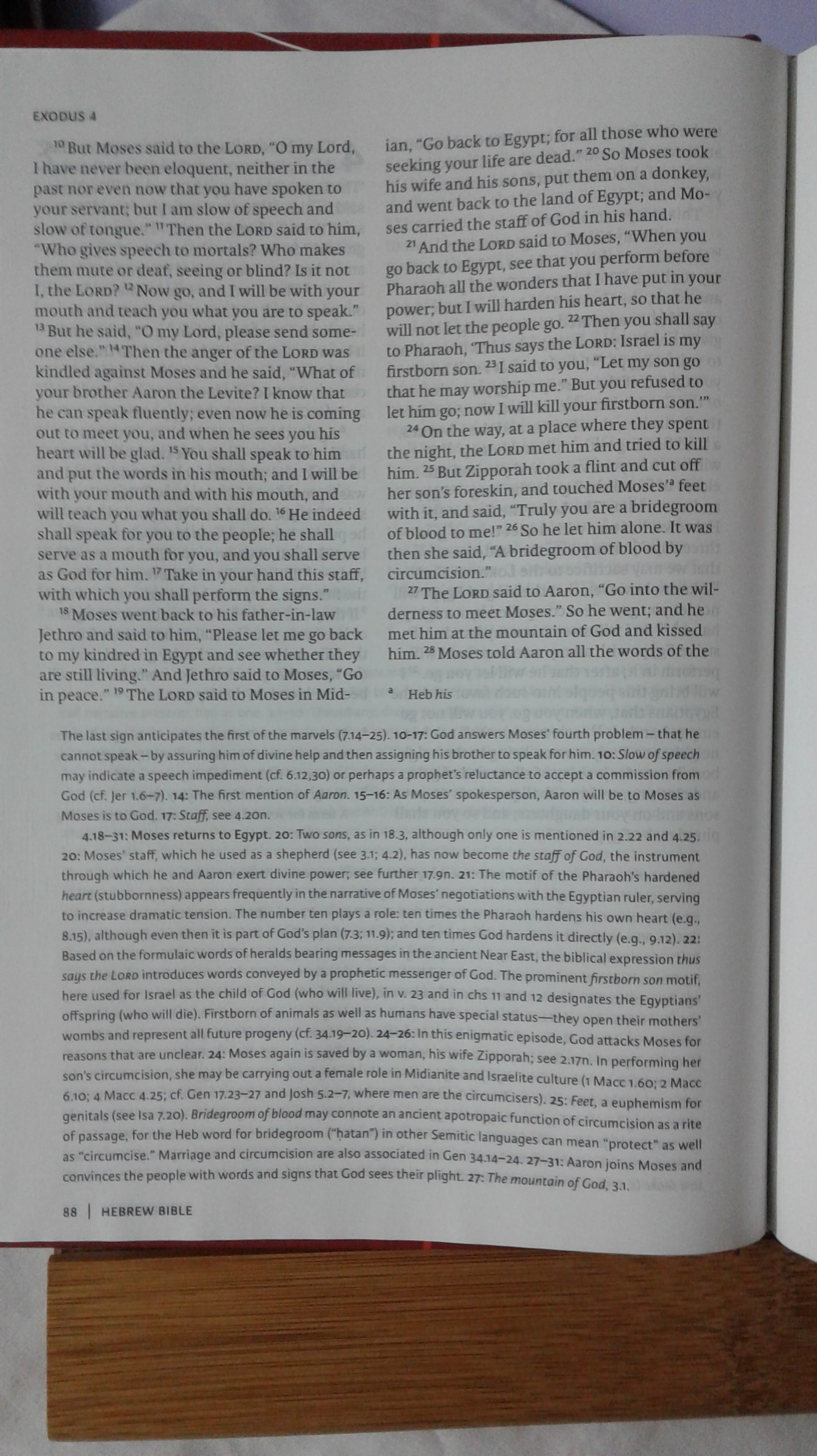 new oxford annotated bible review